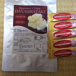 乳酸発酵ハナビラタケ(5日分)売ります