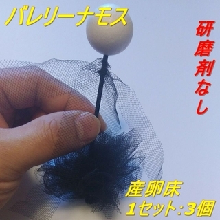 【代引き発送可】 バレリーナモス産卵床 ※研磨剤未使用