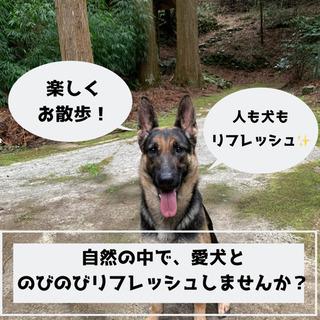 大自然の中で愛犬とのびのびお散歩しませんか?