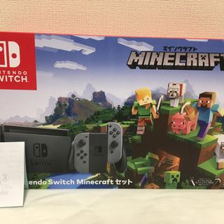 Nintendo Switch  グレー マインクラフト同封限定版