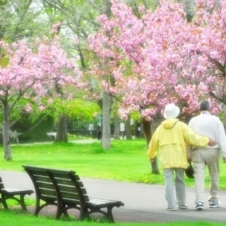 ◆蕨駅より徒歩5分、蕨市◆介護福祉士1,700円、2級1,600...