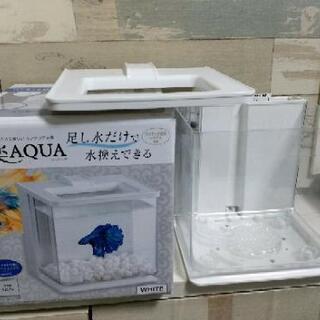 インテリア水槽 楽AQUA  ラクアクア