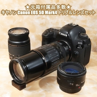 ★元箱付属品多数★キヤノン Canon EOS 5D Mark4...
