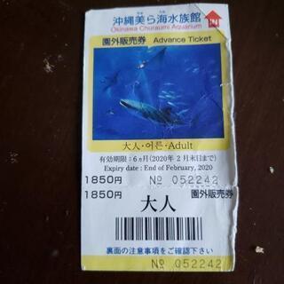 美ら海水族館チケット格安!!