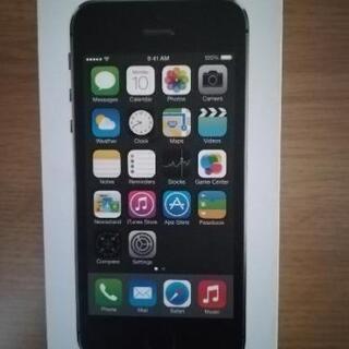29日昼久喜幸手可能 iPhone5sの付属品 箱 イヤホン