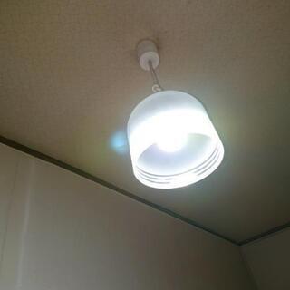 ライト 2台