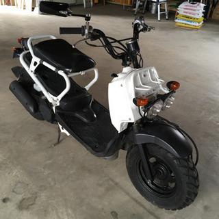ホンダHONDA ZOOMARズーマー50cc