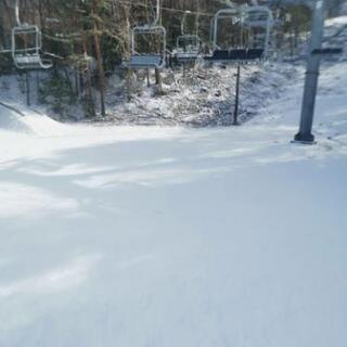 3月21日にスノーボード行きませんか?