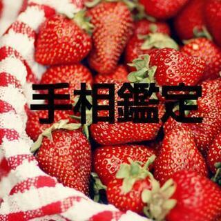 ✋手相鑑定 1000円❗