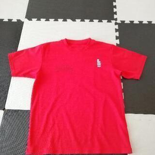 ゴーセンTシャツ(たぶんMサイズ)