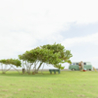(2) 草刈り、草抜き、除草剤の散布、砂利敷、庭掃除、お庭・植木...