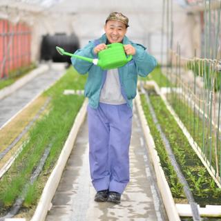 【障がい者採用】しあわせな働き方を目指す。野菜づくりのお仕事を通...