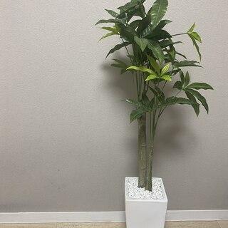 人工観葉植物 パキラ