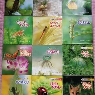 自然*きらきら 絵本一冊200円。
