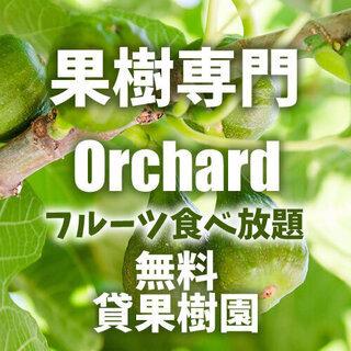 🥭🍐イチジクなど果樹専門のオーガニック貸し農園始めます!利用料無...