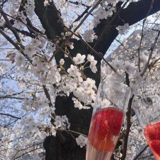 3/29(日)東京に美男美女大集合!お花見パーティー🌸 - 台東区