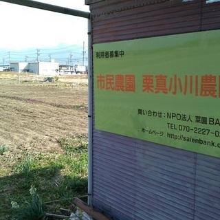 市民農園の利用者募集(月/500円・年間/6000円)