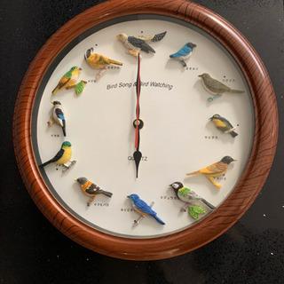 鳥付き 掛け時計 バード おしゃれ 可愛い