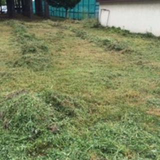 ⭐️お庭・所有地の草刈り⭐️