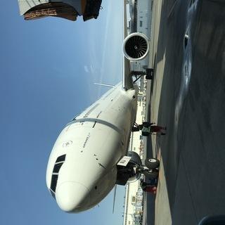 飛行機機内清掃作業
