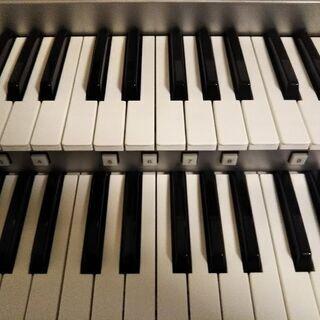 宮野木町 エレクトーン ピアノ教室