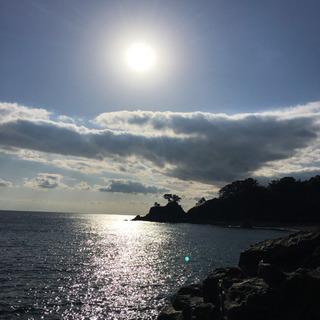 高知県で釣りする方募集!