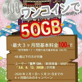 【月100円 50GB❗】格安シム業者最安値❗ 期間限定❗