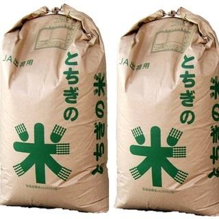【令和元年産】とちぎの米 コシヒカリ2