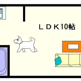 【ルーエ桜川】1号タイプ!1LDKタイプ!最近の桜川って住みやす...