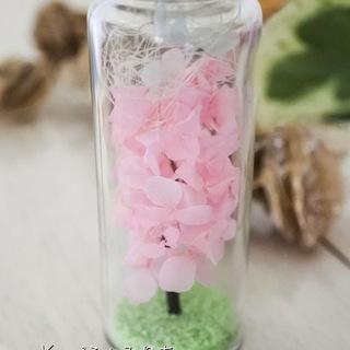 桜満開♥桜の木のボトルフラワー&ハーバリウム♥