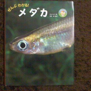 メダカの育て方他、いきものの本1冊200円
