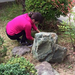 【3/15(日)※1名限定】お庭の草刈りをする簡単なお仕事です。