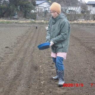 福祉貸農園「おひさま農園」 イベント 体験畑へのご案内