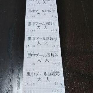 いきいきプール(黒羽)大人回数券9枚