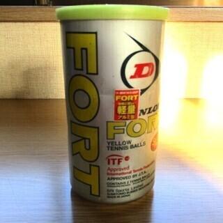 DUNLOP テニスボール FORT 2個入 ダンロップ …
