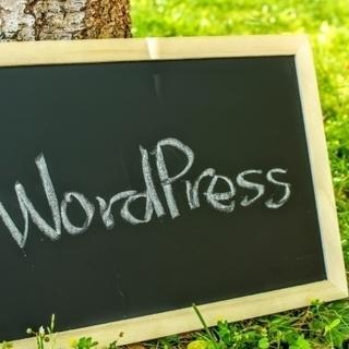 【1サイト1500円(30分以内で完了した場合は750円)★オンライン・全国対応】WordPressでホームページの土台を製作代行いたします(サーバーにWordPressをインストールしてテーマを適用するまでのシンプルなものです)。サーバーを扱うのは初めてなので不安だし勉強する時間もない・本業や家事に追われてなかなかはじめの一歩を踏み出せない・やりたいことは記事の作成などで、その入れ物を用意するのはお願いしてしまいたい…などなど★ まずはご相談くださいませ^^※プロフィール確認必須でお願い。 − 東京都