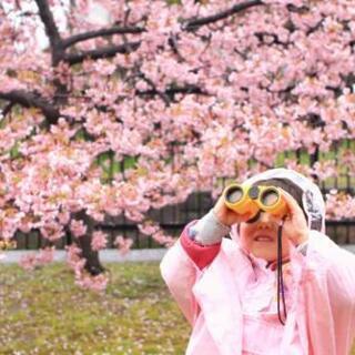 🌸満開の桜のトンネル🌸で、るんるん撮影会😊📷️🎶