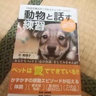 中止  犬