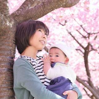 【出張桜フォト撮影】ファミリー、お友達同士、個人でも…