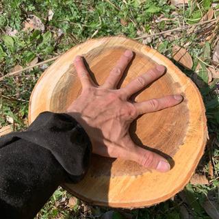 活動資金に‼︎、薪割り台、桜?。薪ストーブの前で焚き付け材…
