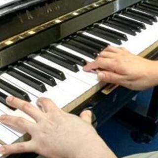 Senple音楽教室  体験レッスン実施中、