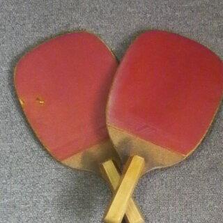 お家でファミリーピンポン🏓卓球ラケット、卓球ネット&ネットサポート