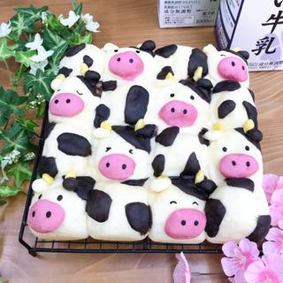 【酪農家さん応援レッスン】モーモーミルクちぎりパン