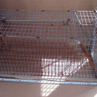 捕獲器猫トリ籠ワナはんたーアライグマ仕掛け設置駆除逮捕8千…