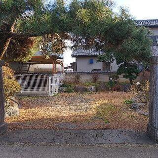 植木、庭石