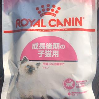 猫の餌 キャットフード ロイヤルカナン 試供品