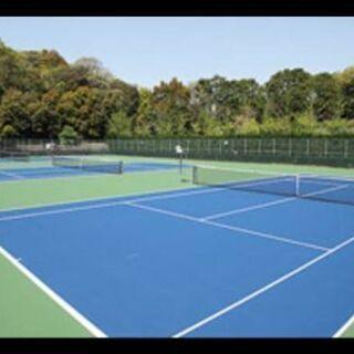 テニス プライベート、グループレッスン