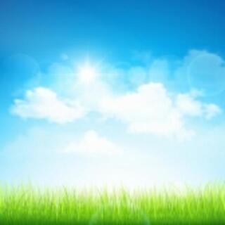 太陽光パネルの無料設置住宅提案スタッフ