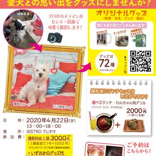 4/22日(水)うちの子(写真&動画)撮影会BISTRO うしす...