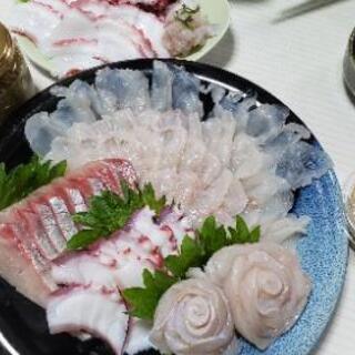 魚捌きます!